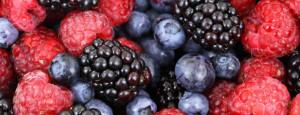 witaminy owoców jagodowych