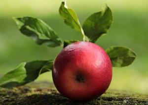 Jabłko a waga ciała